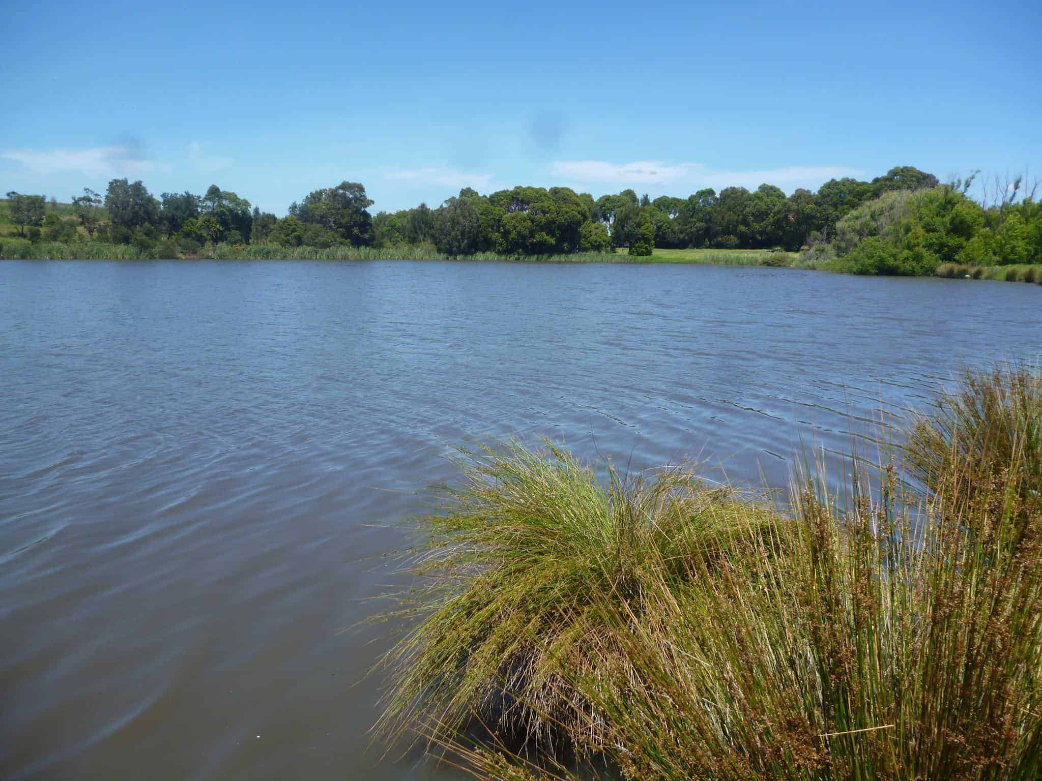 Cultural Connections | Coomaditchie Lagoon