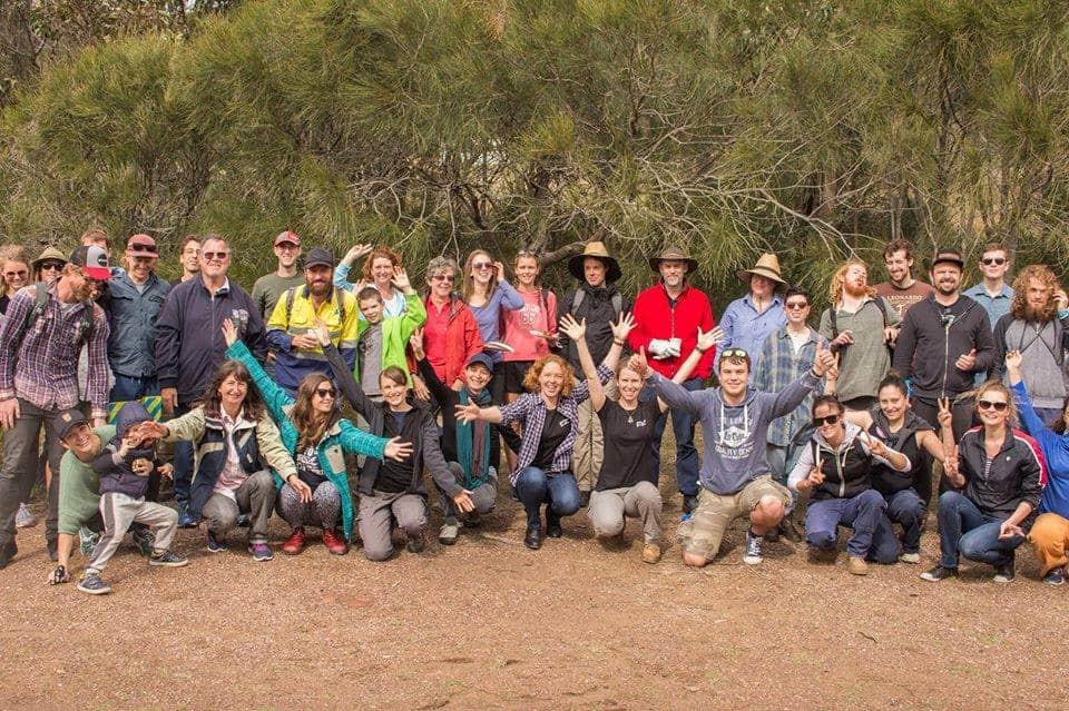 NSW | Planting a Littoral Rainforest ~ Part 2