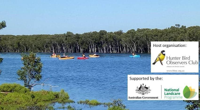 NSW | Kayaking Mangrove ~ Mission 2