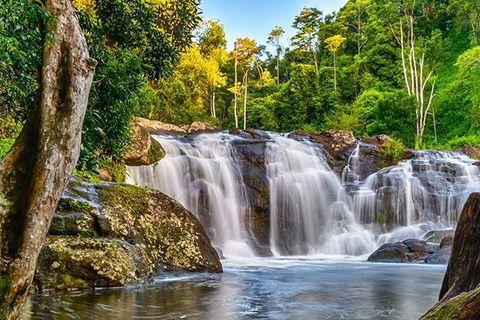 NSW | Creeks 'n Grass